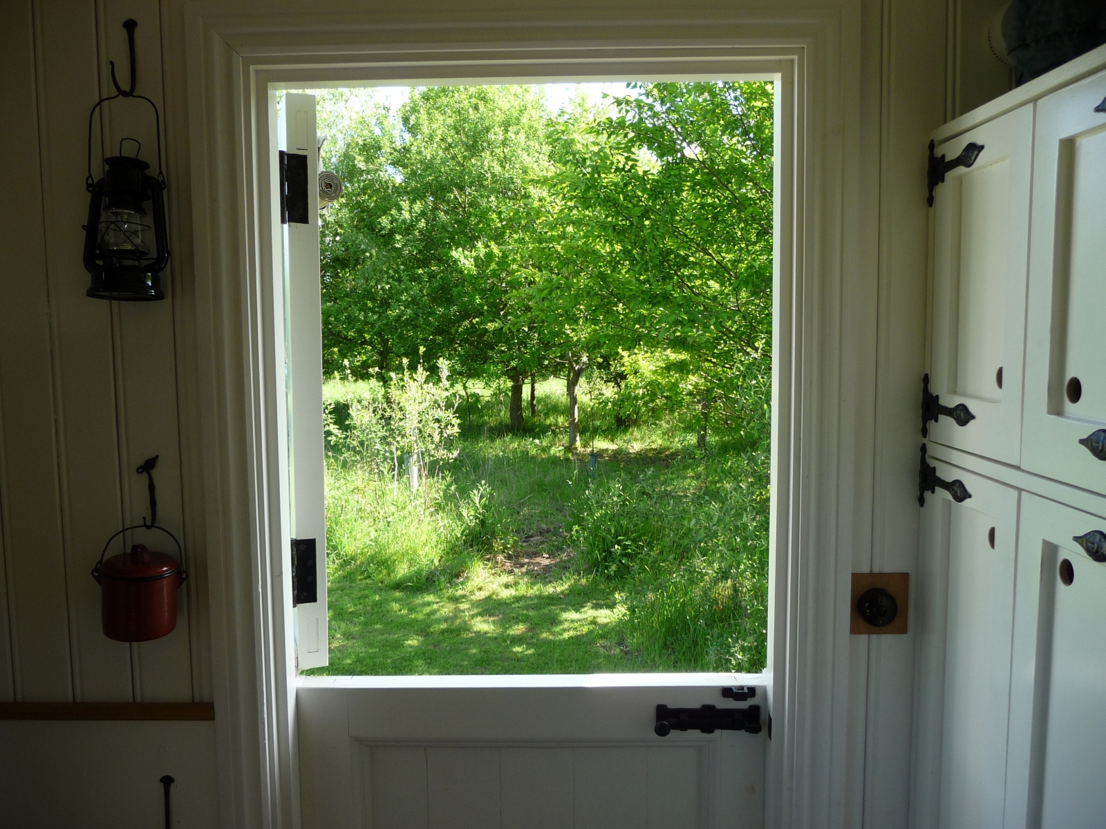 view from shepherds hut
