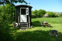 holiday in secluded woodland